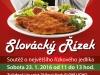 rizek_web